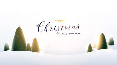 Merry Christmas and New Year. Winter landscape with falling Christmas snowflakes, light, stars. Vector illustration