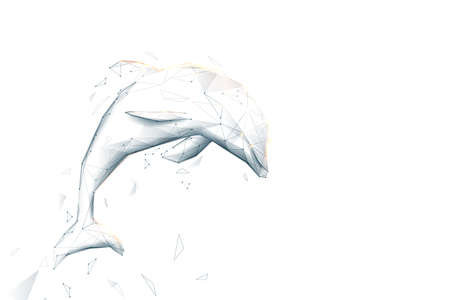 Dolphin jumping. Low poly, geometric, wire, Particles, lines, and triangles outline. Vector illustration