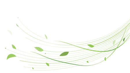 Abstract green lines floral vector background. Vector illustration