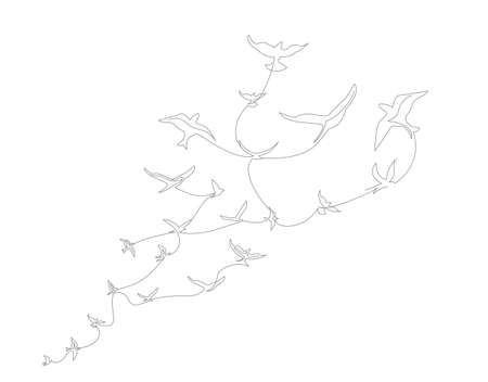 continuous line drawing with A flock of flying birds. Freedom Line art. Black and White vector design Ilustração