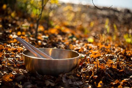singing bowl massage: bronze bowl on the lake