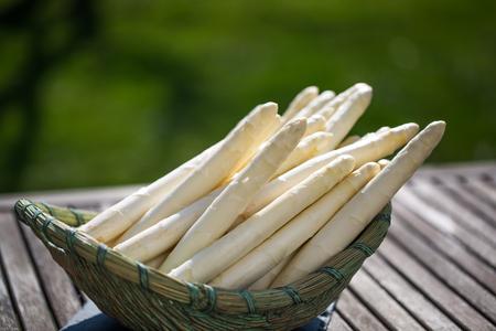 Asparagus, white asparagus in basket, garden in background