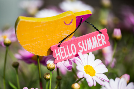 Hello Summer, decoration bird in daisies Stock Photo