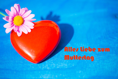 red heart with margarits on blue background Stock Photo
