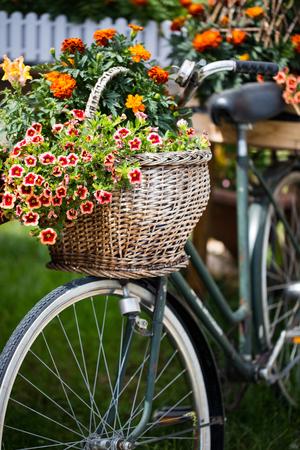 Fahrrad mit Blumen geschmückt Standard-Bild