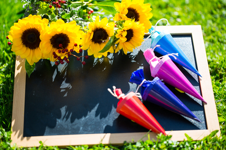 Table is in the meadow with school bags, school day, with sunflowers Stock Photo