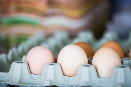Eggs in egg carton, organic eggs, mass production Standard-Bild - 101152932