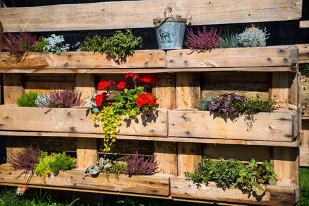 Pallet rebuilt into flower boxes