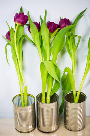 Tulips in a tin can