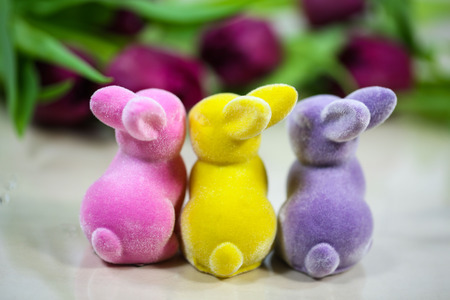 colorful easter bunny with tulips 版權商用圖片