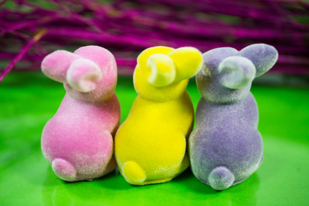 colorful funny easter bunnies from behind, easter bunnies from behind, decoration bunnies