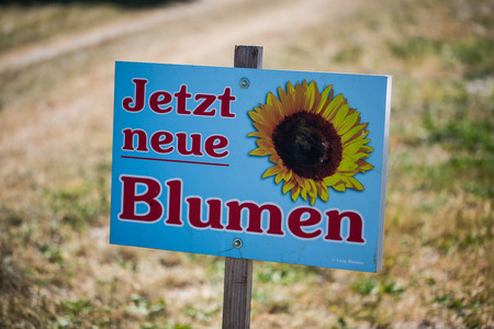 Flowers for self picking, advertising sign