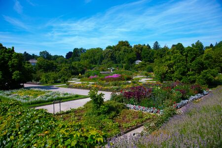 botanical garden in munich, bavaria, blue sky