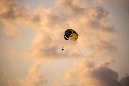 Tandem flight in the evening sky