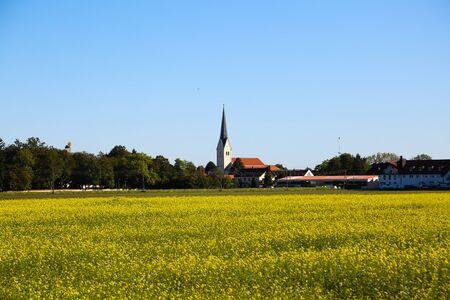 Feldmochinger church tower with rape field 版權商用圖片