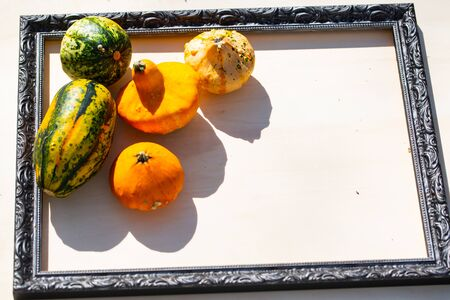 Pumpkins, apples and pears on wood background in a picture frame 版權商用圖片 - 132325965