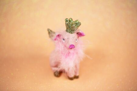Lucky pig on pink background, talisman