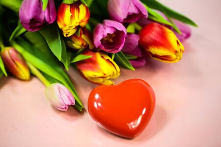 tulips with hearts on pink background, with diffrent hearts