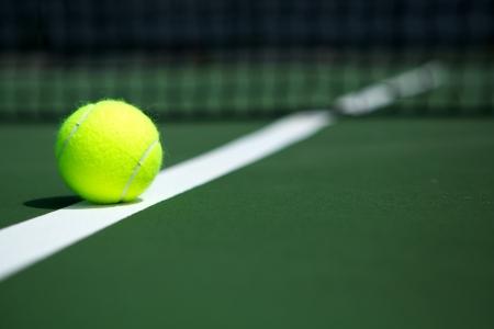 raqueta de tenis: Pelota de tenis en la cancha con la red en el fondo