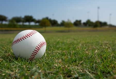 outfield: New Baseball in the Outfield Stock Photo