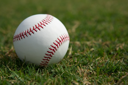 New baseball in the Outfield Grass with room for copy Stock Photo - 17729174