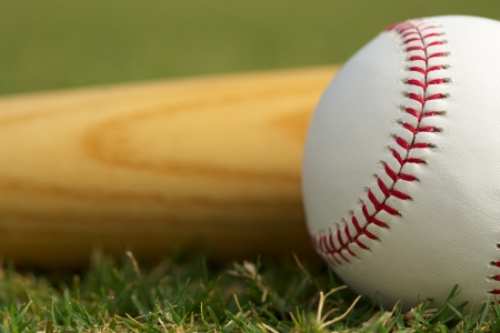Baseball Close Up   Bat on the grass with room for copy