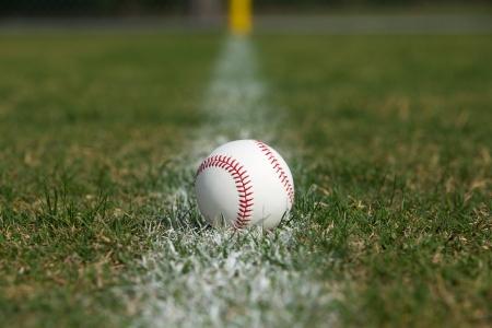 Baseball on the Outfield Fair Ball Chalk Line Stock Photo - 18825703