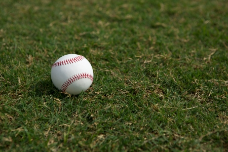 outfield: Baseball on the Outfield Grass with room for copy Stock Photo
