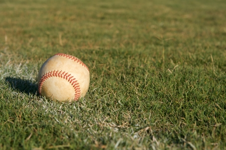 Baseball in the Outfield Stock Photo - 23749970