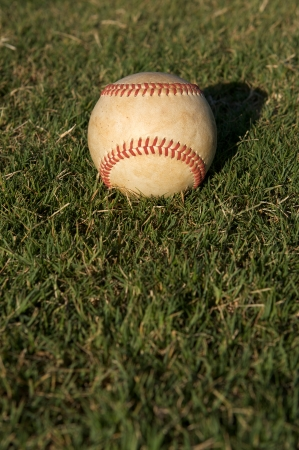 outfield: Baseball on Outfield Grass with room for copy Stock Photo