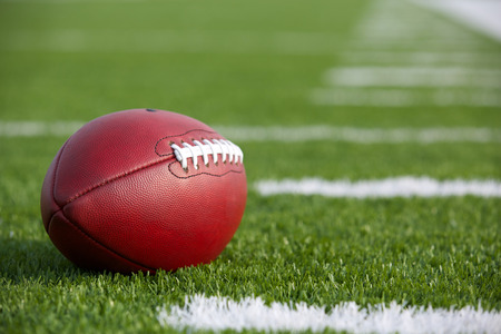 american football field: Professional American Football on the Field