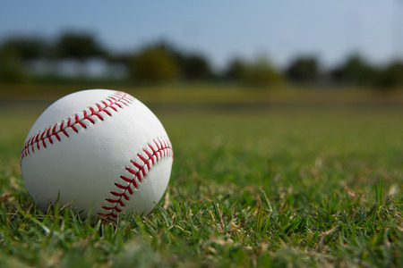 outfield: Baseball on the Outfield Grass Close up