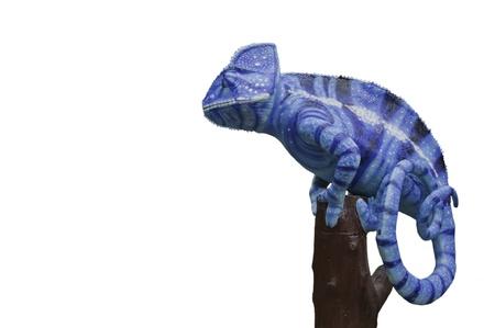 chameleon lizard:  Chameleon statue