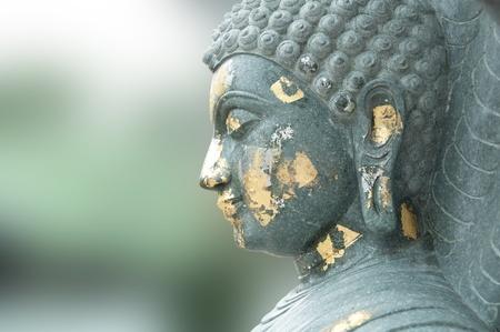buddha face in meditation style