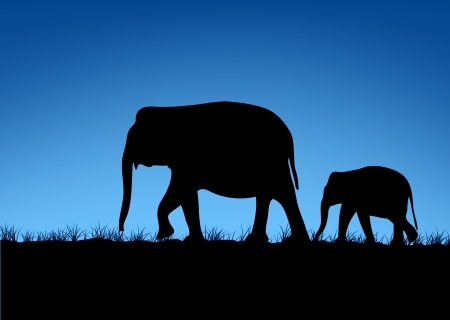 asian family: Elephant family silhouettes in Asian forest