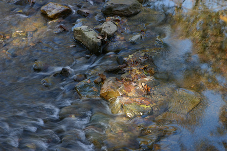 rushing water: Leaves in rushing creek water