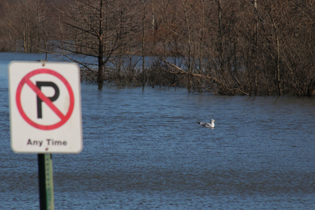 no  parking: No Parking sign in flood waters in Missouri Stock Photo