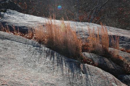 louis: Elephant Rocks outside of Saint Louis, Missouri Stock Photo