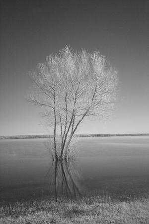 oklahoma: Grand Lake in Oklahoma