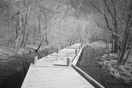 missouri: Springfield Conservation Center in Springfield, Missouri Stock Photo