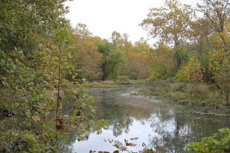 james: James River at Springfield Conservation Center in Springfield, Missouri