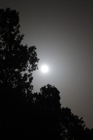 cloud formations: Moonlight skies in Joplin, Missouri Stock Photo