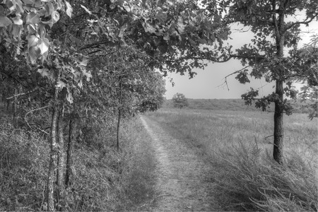 missouri: Wilsons Creek Battlefield in Springfield, Missouri Stock Photo
