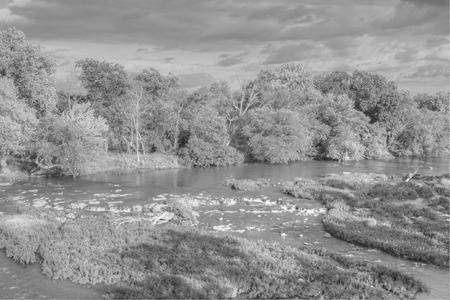 brooklet: Shoal Creek in Joplin, Missouri