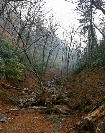 great smoky national park: Great Smoky Mountains National Park in Tennessee-North Carolina