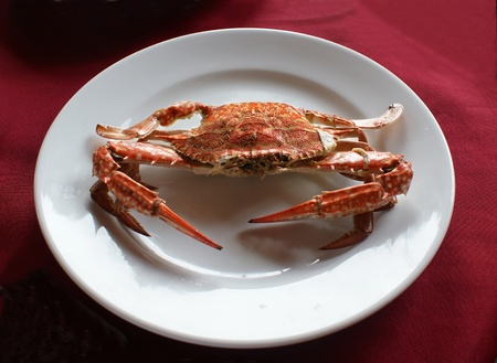 Boiled red crab on the white plate.