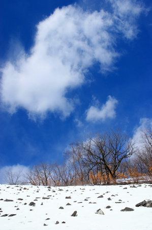 Winter landscape with a cloud.