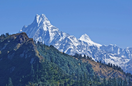 Jagged snow-capped peak Machapuchare and mountains with a forest on the background of blue sky.
