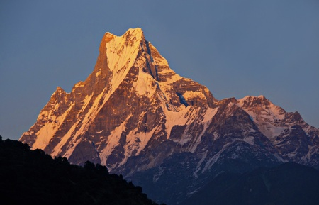 The Peak of Machapuchare in the Himalayas in the rays of the rising sun.