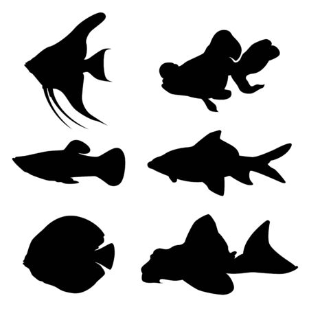Fresh Water Fish Silhouette Vector on White